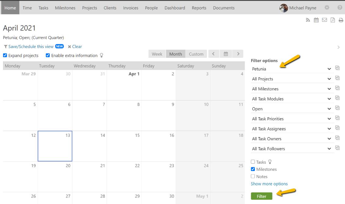 Calendar Filter