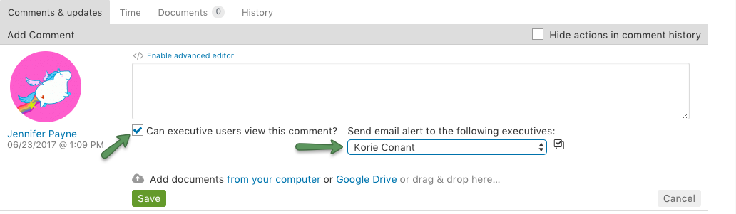 Allow executive user to view comment and send email