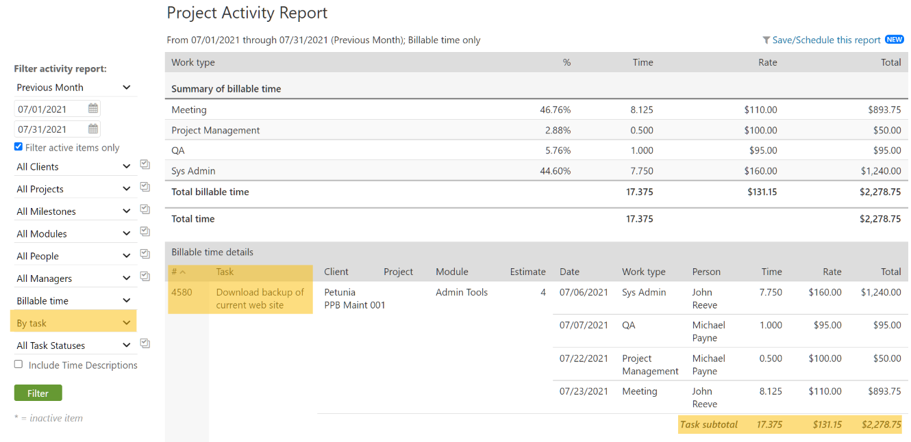 Project Activity Report by Task