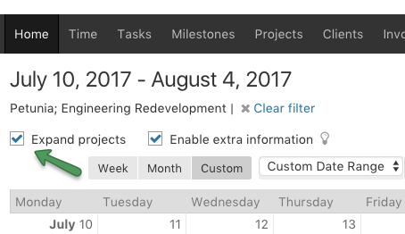Calendar - Expand Projects